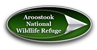 Aroostook National Wildlife Refuge